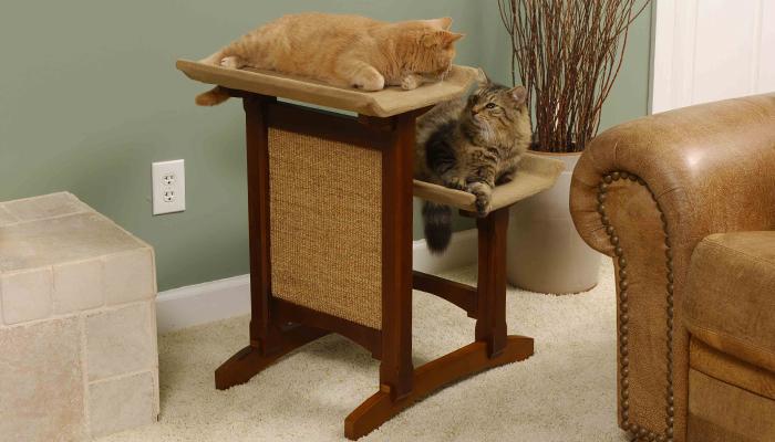 Фабрика мебели кота