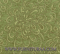 rapsodia-green.png